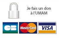 Faire un don à l'UMAM